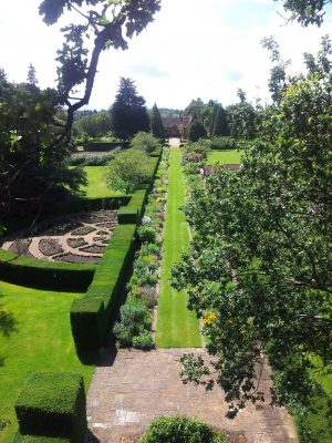 Planting for Surrey and the surrounding area